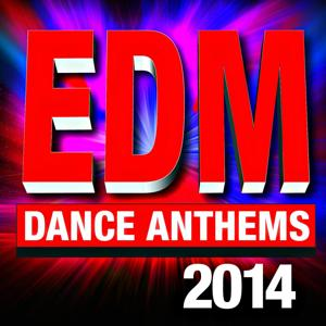 EDM 2014 – Dance Anthems