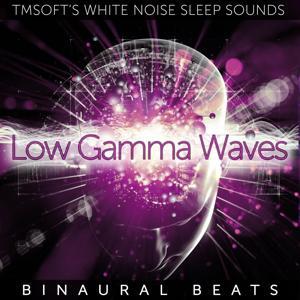 Low Gamma Waves Binaural Beats