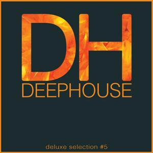 Deep House DeLuxe Selection #5 (Best Deep House, House, Tech House Hits)