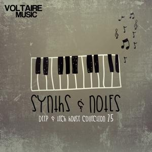 Synths and Notes 25