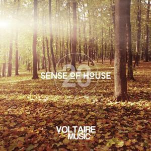 Sense of House, Vol. 28