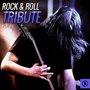 Rock & Roll Tribute, Vol. 3