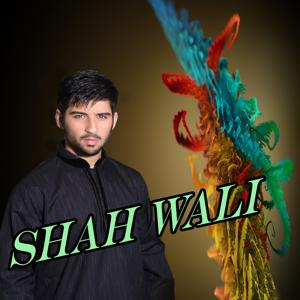 Shah Wali