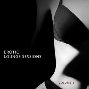Erotic Lounge Session, Vol. 3 (Finest In Deep House & Electronic Dance Music)
