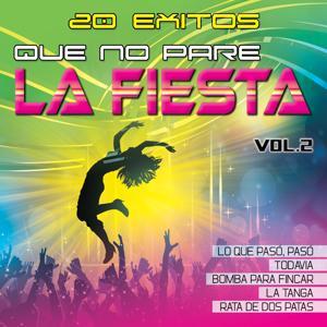 Que No Pare la Fiesta, Vol. 2