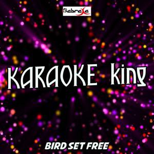Bird Set Free (Karaoke Version) (Originally Performed by Sia)