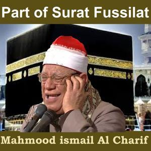 Part of Surat Fussilat (Quran)
