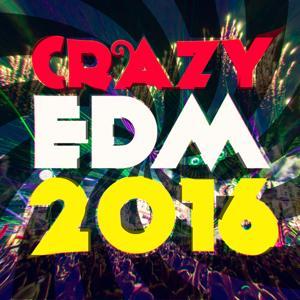 Crazy EDM 2016