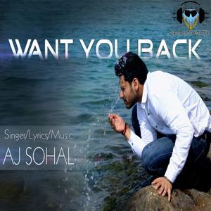 Ek Tuhi Si Meri Jindadi (Want You Back)