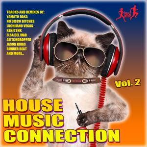 House Music Connection, Vol. 2
