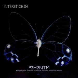 P2H2NTM (Interstice 4) (Paysage hybride d'histoires numériques naturelles terrestres et marines)