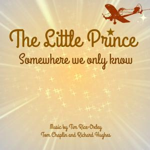Somewhere We Know (From the Little Prince Movie)