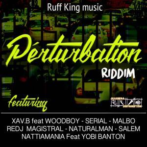 Pertubation Riddim