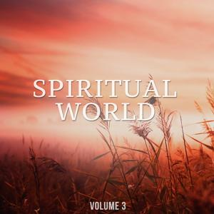 Spiritual World, Vol. 3