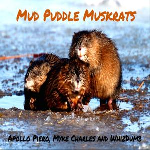 Mud Puddle Muskrats