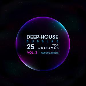 Deep-House Bubbles (25 Top Grooves), Vol. 3