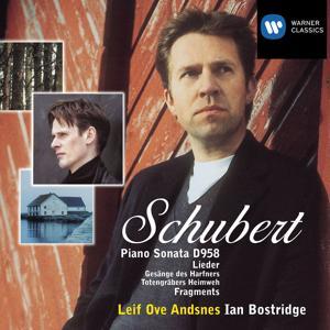 Schubert: Piano Sonata, D.958