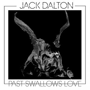 Past Swallows Love