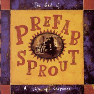 A Life Of Surprises: The Best Of Prefab Sprout