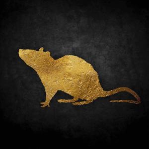 Rats Gold, Vol. 1