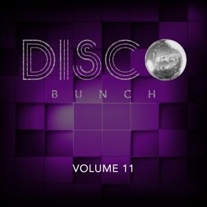 Disco Bunch, Vol. 11