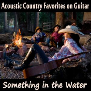 Acoustic Country Favorites on Guitar: Something in the Water
