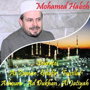 Sourates Az Zumar , Ghafir , Fussilat , Achoura , Ad Dukhan , Al Jatiyah (Quran)
