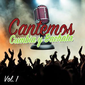 Lo Mejor de la Cumbia y la Bachata, Vol. 1