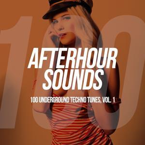 Afterhour Sounds - 100 Underground Techno Tunes, Vol. 1