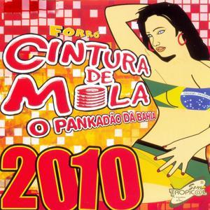 O Pankadão da Bahia