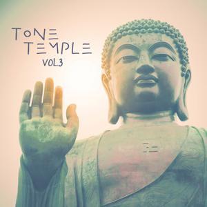 Tone Temple, Vol. 3