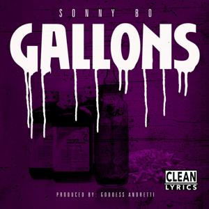 Gallons - Single