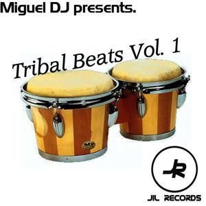Tribal Beats Vol. 1