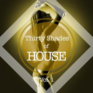 Thirty Shades of House, Vol. 1