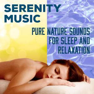 Serenity Music: Pure Nature Sounds for Sleep and Relaxation, Spa Massage, Soft Instrumental Music for Inner Peace, Cure for Insomnia, Deep Sleep REM Inducing