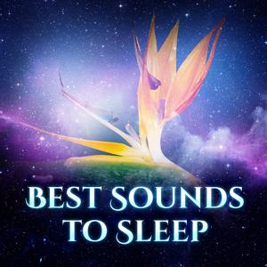 Best Sounds to Sleep - Quiet Night, Good Night, Peaceful Sleep, Dream World, Warm Bed, Milk Before Bedtime