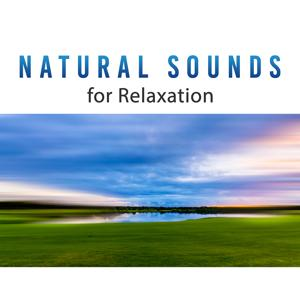 Natural Sounds for Relaxation – Deep Relaxing Nature Sounds, Natural Music, Forest Sounds, Water Music