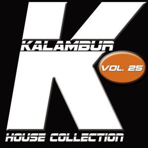 Kalambur House Collection, Vol. 25