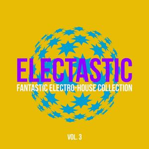 Electastic (Fantastic Electro-House Collection), Vol. 3
