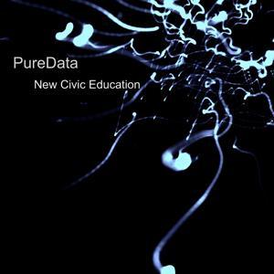 New Civic Education