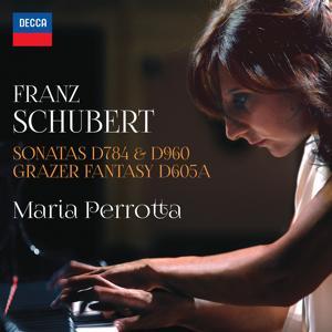 Schubert: Sonatas D784 & 960 - Grazer Fantasy D605A