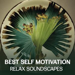 Best Self Motivation: Relax Soundscapes - Mindfulness Meditation Session for Yoga, Sound Therapy & Healing Music, Deep Breath Training, Better Sleep