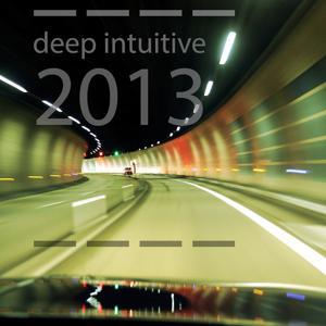 Deep Intuitive 2013