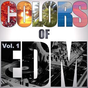Colors of EDM, Vol. 1