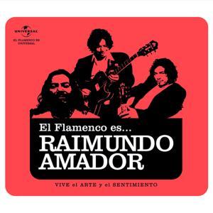 Flamenco es... Raimundo Amador
