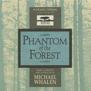 Phantom Of The Forest
