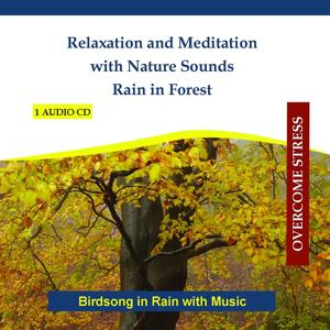 Relaxation and Meditation with Nature Sounds - Rain in Forest - Birdsong in Rain with Music