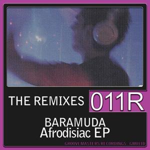 Afrodisiac (The Remixes)