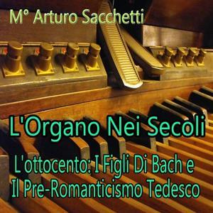 L'organo nei secoli : L'ottocento - I figli di Bach e il pre-romanticismo Tedesco