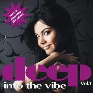 Deep Into The Vibe Vol. 1 (incl. 2 non-stop DJ mixes)